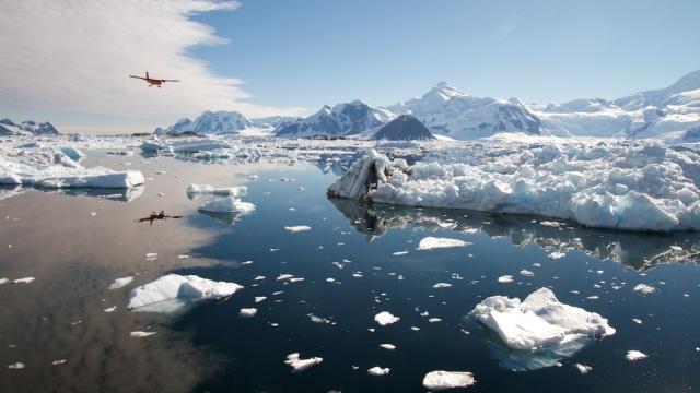 Ice 1358