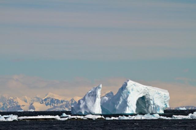 Ice 1361